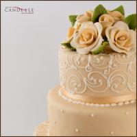 torta-novios1a