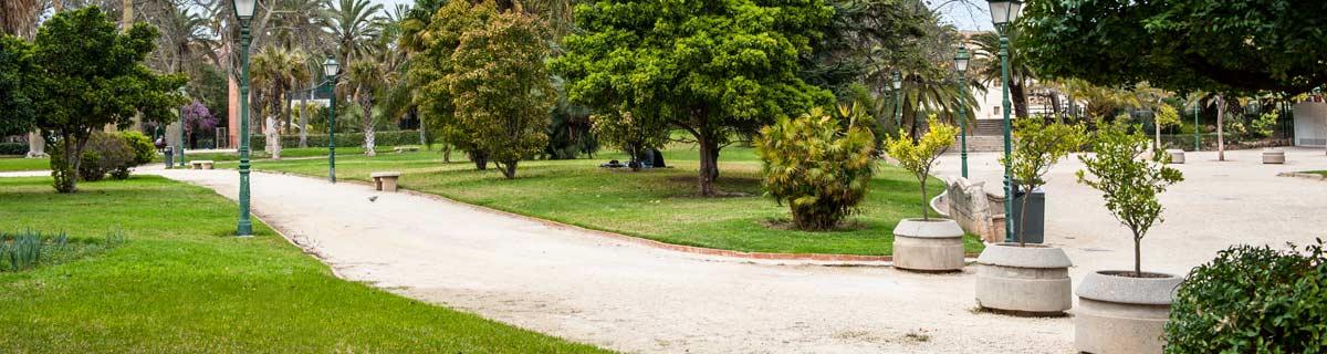 mantención de areas verdes
